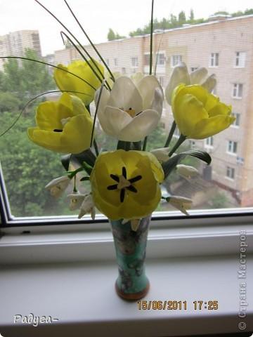 Лепка для меня новое ремесло.Здесь я новичок.И мало,что умею.Но ведь творить то хочется!!!Поэтому родились новые цветочки.Сначала были розы,вот теперь затаив дыхание показываю свои тюльпанчики.Давно о них мечтала.И вот они появились на моем окне. фото 1