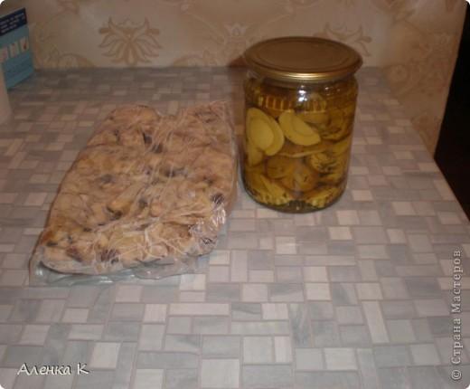 315 грибов-боровичков. фото 7
