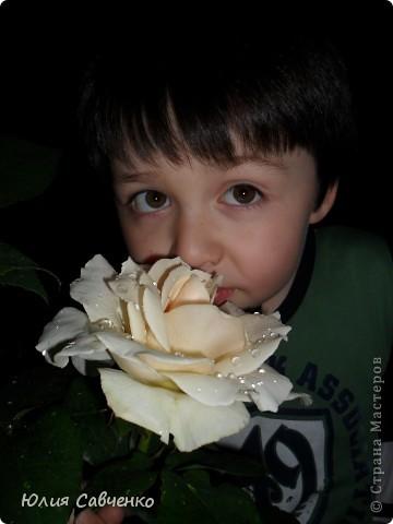 Кто не верит, всех зову я в сад,  Видите, моргая еле-еле,  На людей доверчиво глядят  Все цветы, как дети в колыбели.  В душу нам глядят цветы земли,  Добрым взглядом всех кто с нами рядом.  Или же потусторонним взглядом  Всех друзей, что навсегда ушли. ( Расул Гамзатов)  фото 17