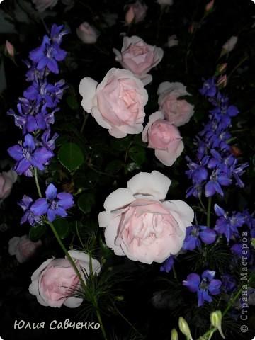 Кто не верит, всех зову я в сад,  Видите, моргая еле-еле,  На людей доверчиво глядят  Все цветы, как дети в колыбели.  В душу нам глядят цветы земли,  Добрым взглядом всех кто с нами рядом.  Или же потусторонним взглядом  Всех друзей, что навсегда ушли. ( Расул Гамзатов)  фото 12