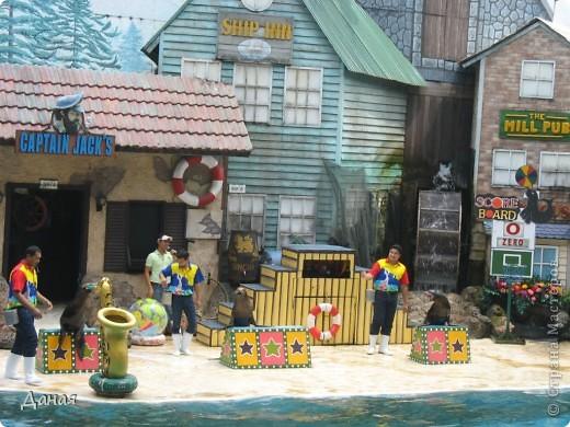 Одним из пунктов моего тайского путешествия был сафари-парк в Бангкоке. фото 29