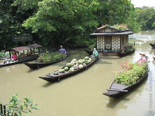 Одним из пунктов моего тайского путешествия был сафари-парк в Бангкоке. фото 54