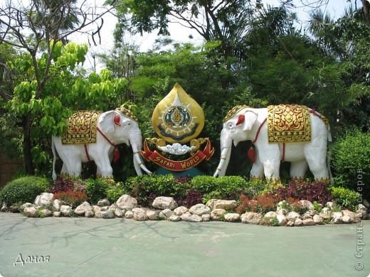 Одним из пунктов моего тайского путешествия был сафари-парк в Бангкоке. фото 1