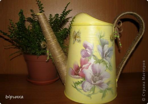 Леечка цветочно-лимонная... родилась в конце мая )))) фото 1