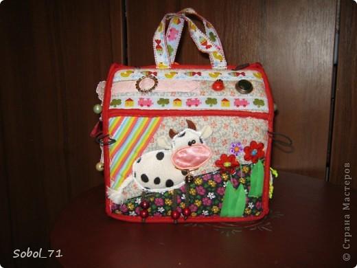 Вот, только закончила на подарок к первому дню рождения девочки, еще не подарила.  Такая сумочка- кукольный домик Форма-идея из интернета, содержание - полет фантазии. фото 1
