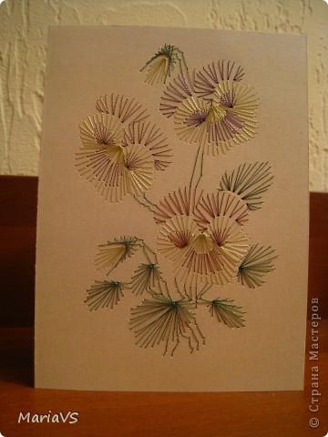 цветочные мотивы фото 1