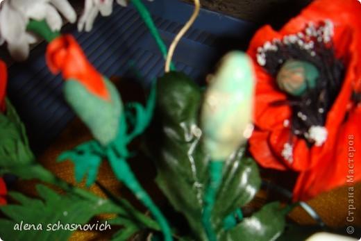 Полевые цветы.Ничего нового конечно ,но для меня они очень много значат --ведь они первые!!! фото 4