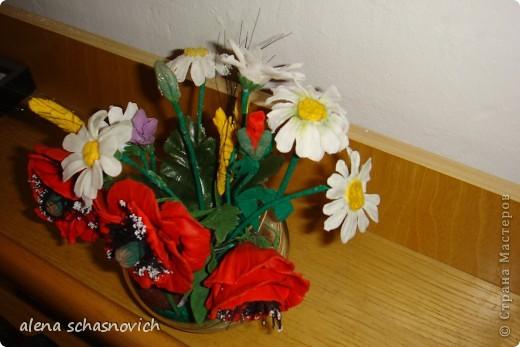 Полевые цветы.Ничего нового конечно ,но для меня они очень много значат --ведь они первые!!! фото 6
