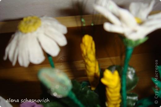 Полевые цветы.Ничего нового конечно ,но для меня они очень много значат --ведь они первые!!! фото 3