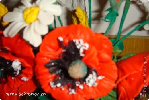 Полевые цветы.Ничего нового конечно ,но для меня они очень много значат --ведь они первые!!! фото 5