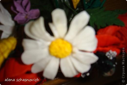 Полевые цветы.Ничего нового конечно ,но для меня они очень много значат --ведь они первые!!! фото 2