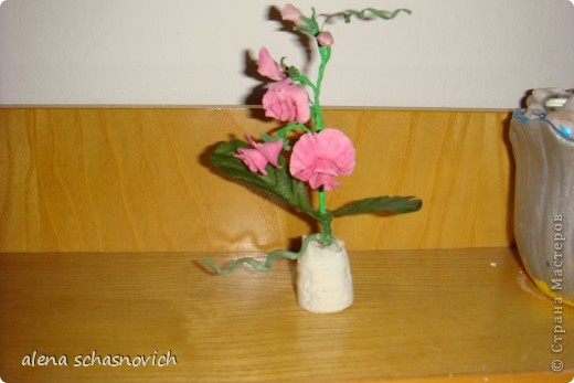 Полевые цветы.Ничего нового конечно ,но для меня они очень много значат --ведь они первые!!! фото 7