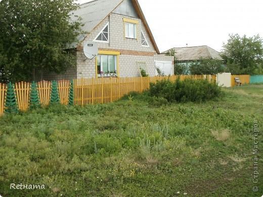 елочный  забор фото 4