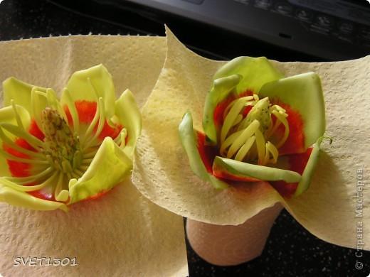 Вот это результат дружеских посиделок по лепке. А лепили мы цветок тюльпанного дерева. Сидели вдвоём с Олей поэтому два цветка :Олин нежный левый, а мой яркий правый!  фото 1