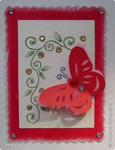 цветочки, бабочки фото 5