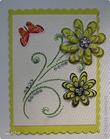 цветочки, бабочки фото 9