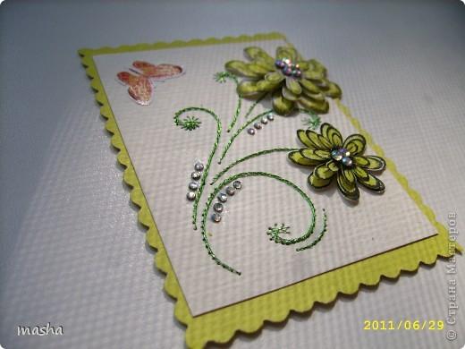 цветочки, бабочки фото 10