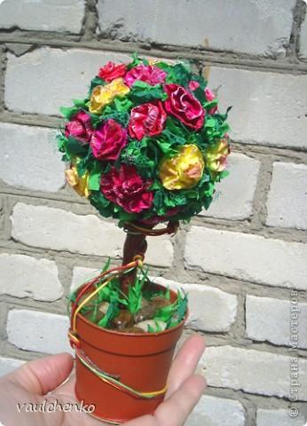 Ко дню рождения для замечательного человека решила сделать классическое деревце. фото 1