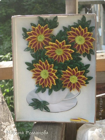 Знакомьтесь - это мои хризантемы! фото 2