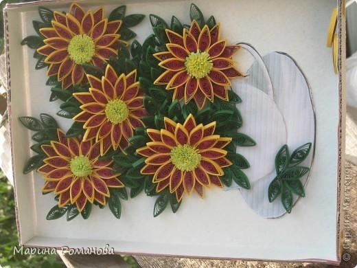 Знакомьтесь - это мои хризантемы! фото 3