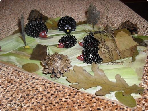 Такую колючую семейку мы с сыном смастерили на праздник осени, который проходил в школе. Материалы: Пластилин (для основы ежиков), семена подсолнечника, шишки, сухие листья (гербарий), кусок ДВП, лак для покрытия ежиков (чтобы блестели))))...и ваша фантазия... фото 3