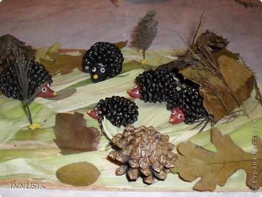 Такую колючую семейку мы с сыном смастерили на праздник осени, который проходил в школе. Материалы: Пластилин (для основы ежиков), семена подсолнечника, шишки, сухие листья (гербарий), кусок ДВП, лак для покрытия ежиков (чтобы блестели))))...и ваша фантазия... фото 1