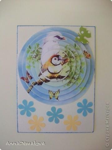 """Девочки, пока есть кураж, свободное время и краска в принтере, решила порадовать себя и вас ещё несколькими сериями 3D. Они правда такие красивые получаются. Сама любуюсь. Если есть желание с удовольствием поделюсь с вами этой красотой. Выбирайте пожалуйста. Серия из 9-ти карточек. Называется """"Экзотические птицы"""". предпочтение отдаю тем, кто в прошлой серии остался без карточки. Ну правда, очень хочется, что бы вы это увидели своими глазами. А интересно, кто придумал этот 3D эффект? Ну что, теперь посмотрим по одной?! фото 2"""