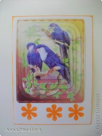 """Девочки, пока есть кураж, свободное время и краска в принтере, решила порадовать себя и вас ещё несколькими сериями 3D. Они правда такие красивые получаются. Сама любуюсь. Если есть желание с удовольствием поделюсь с вами этой красотой. Выбирайте пожалуйста. Серия из 9-ти карточек. Называется """"Экзотические птицы"""". предпочтение отдаю тем, кто в прошлой серии остался без карточки. Ну правда, очень хочется, что бы вы это увидели своими глазами. А интересно, кто придумал этот 3D эффект? Ну что, теперь посмотрим по одной?! фото 5"""