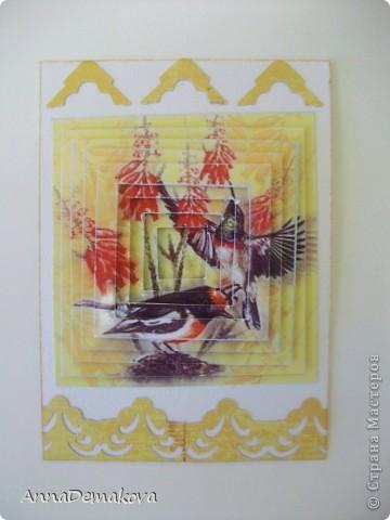 """Девочки, пока есть кураж, свободное время и краска в принтере, решила порадовать себя и вас ещё несколькими сериями 3D. Они правда такие красивые получаются. Сама любуюсь. Если есть желание с удовольствием поделюсь с вами этой красотой. Выбирайте пожалуйста. Серия из 9-ти карточек. Называется """"Экзотические птицы"""". предпочтение отдаю тем, кто в прошлой серии остался без карточки. Ну правда, очень хочется, что бы вы это увидели своими глазами. А интересно, кто придумал этот 3D эффект? Ну что, теперь посмотрим по одной?! фото 7"""