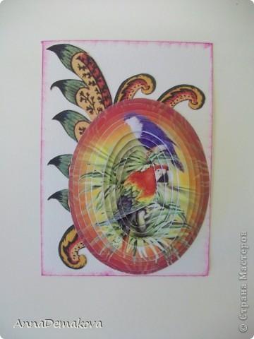"""Девочки, пока есть кураж, свободное время и краска в принтере, решила порадовать себя и вас ещё несколькими сериями 3D. Они правда такие красивые получаются. Сама любуюсь. Если есть желание с удовольствием поделюсь с вами этой красотой. Выбирайте пожалуйста. Серия из 9-ти карточек. Называется """"Экзотические птицы"""". предпочтение отдаю тем, кто в прошлой серии остался без карточки. Ну правда, очень хочется, что бы вы это увидели своими глазами. А интересно, кто придумал этот 3D эффект? Ну что, теперь посмотрим по одной?! фото 10"""