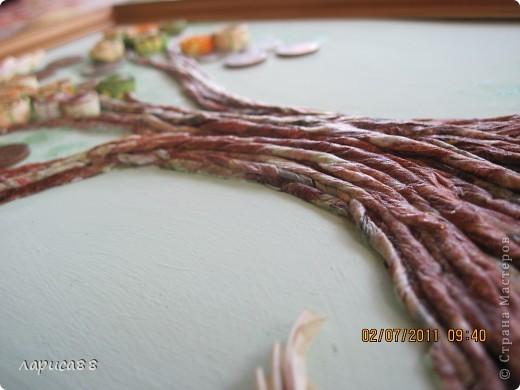 Денежное деревце в подарок зятю. фото 4