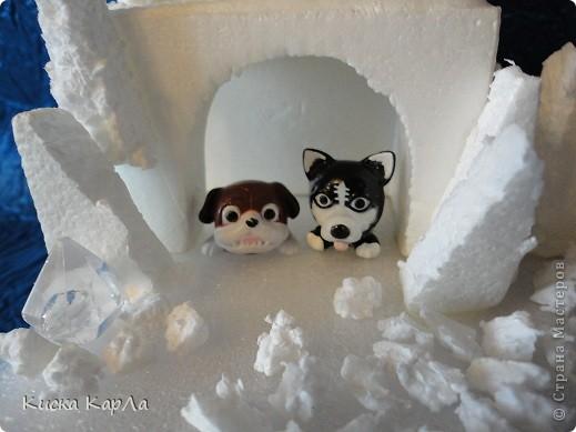 У Вас тоже жуткая жара ? И у нас... Хочу на Север, на льдину !!! фото 8