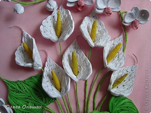 Добрый день жители СМ!На этот раз на белый свет появился дуэт: каллы и орхидей. фото 9