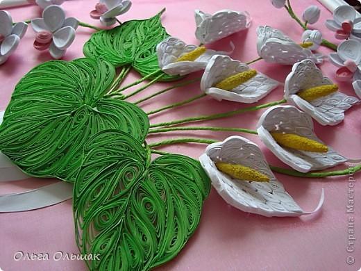 Добрый день жители СМ!На этот раз на белый свет появился дуэт: каллы и орхидей. фото 6