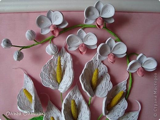 Добрый день жители СМ!На этот раз на белый свет появился дуэт: каллы и орхидей. фото 4
