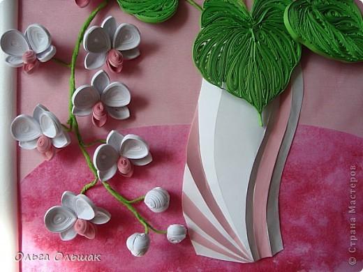 Добрый день жители СМ!На этот раз на белый свет появился дуэт: каллы и орхидей. фото 5