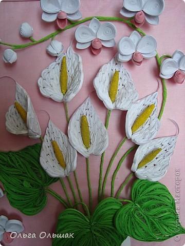 Добрый день жители СМ!На этот раз на белый свет появился дуэт: каллы и орхидей. фото 3