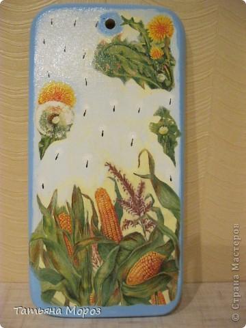 Вот такой кукурузный наборчик родился  фото 3