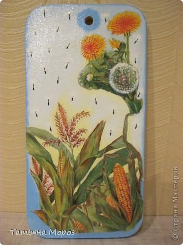Вот такой кукурузный наборчик родился  фото 4