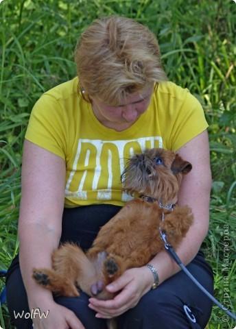 Очередное подтверждение насколько собаки и хозяева похожи фото 19