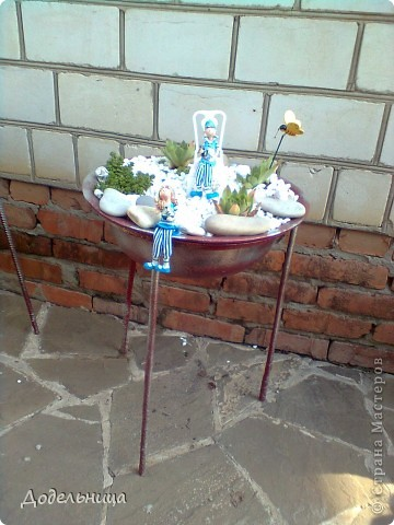 Мои сады сукулентов. фото 2