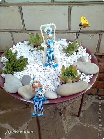 Мои сады сукулентов. фото 4