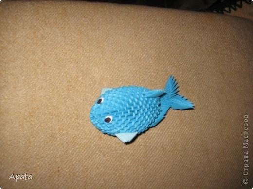 Это кит фото 6