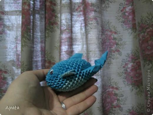 Это кит фото 8
