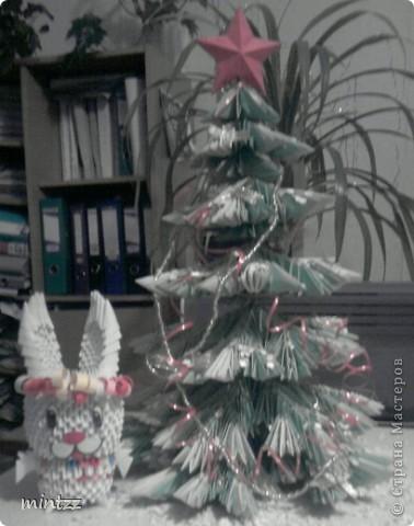 Год зайца все-таки ))  фото 1