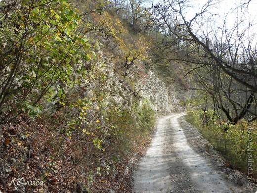 Наш район в Краснодарском крае называют маленькой Швейцарией. Красивейшая природа, уникальные достопримечательности. Приглашаю вас на экскурсию фото 15
