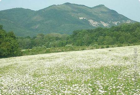 Наш район в Краснодарском крае называют маленькой Швейцарией. Красивейшая природа, уникальные достопримечательности. Приглашаю вас на экскурсию фото 25