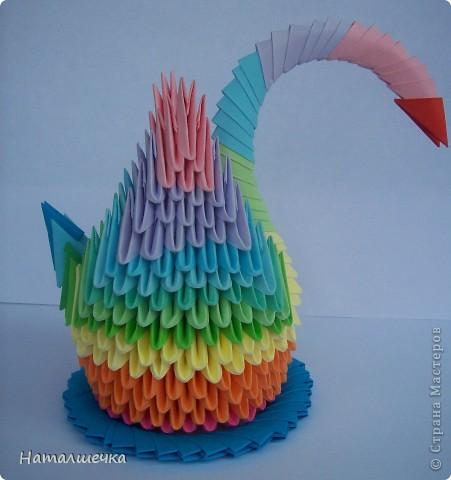 Радужные лебеди фото 3
