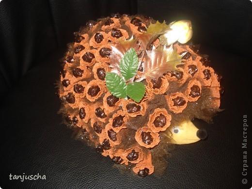 На форуме осинка очень много есть ёжиков и все очень красивые но мне захотелось сделать своего .Я купила готовую пенопластовую форму ёжика и придумала сделать ему вот такие иголочки. Ёжик получился тяжёленьким .На него ушло гдето 500 грамм конфет Merci. Цветочки делала как в МК http://stranamasterov.ru/node/197258 фото 4