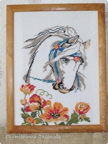 Лошадка  фото 8